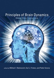 Principles of Brain Dynamics