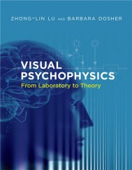 Visual Psychophysics