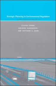 Strategic Planning in Environmental Regulation