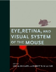 Eye, Retina, and Visual System of the Mouse