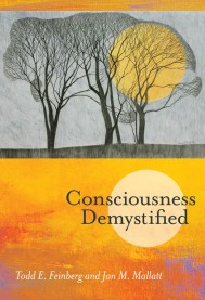 Consciousness Demystified
