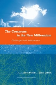The Commons in the New Millennium