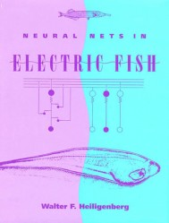 Neural Nets in Electric Fish