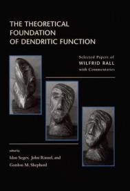 The Theoretical Foundation of Dendritic Function