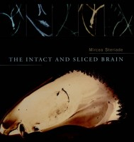 The Intact and Sliced Brain
