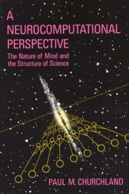 A Neurocomputational Perspective
