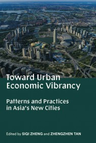 Toward Urban Economic Vibrancy