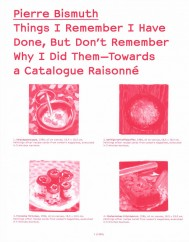 Things I Remember I Have Done, But Don't Remember Why I Did Them—Towards a Catalogue Raisonné