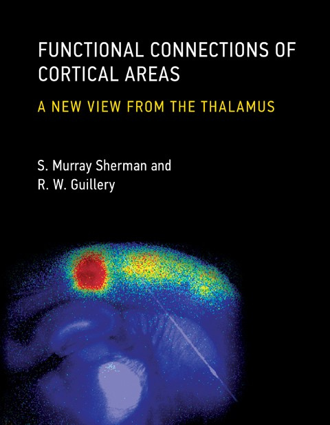 Functional Connections of Cortical Areas