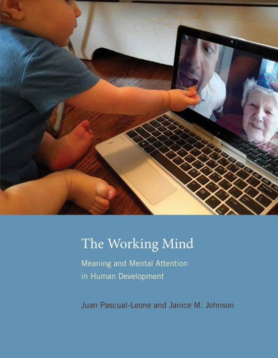 The Working Mind