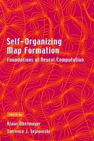 Self-Organizing Map Formation