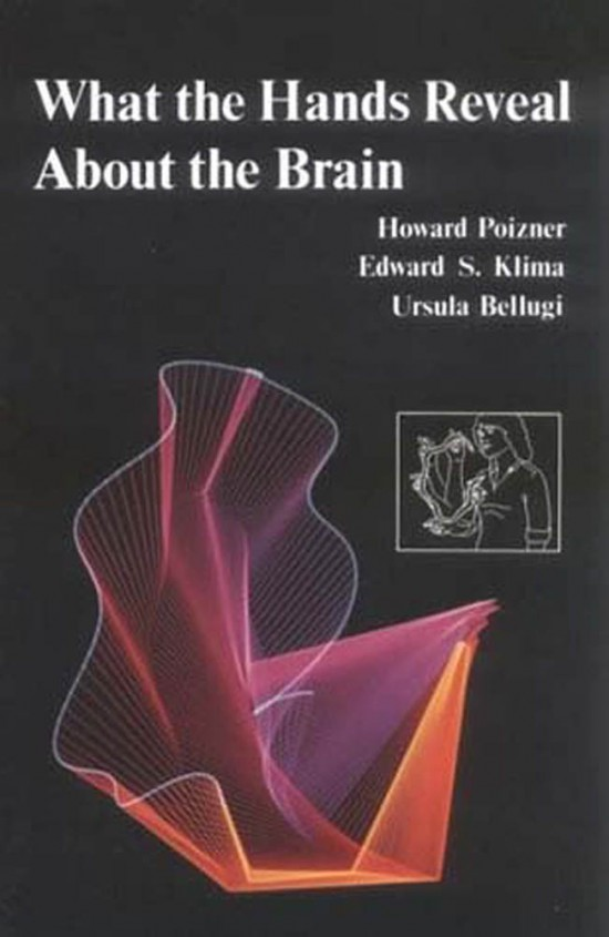 What the Hands Reveal about the Brain