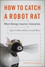 How to Catch a Robot Rat