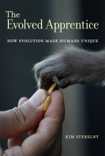The Evolved Apprentice