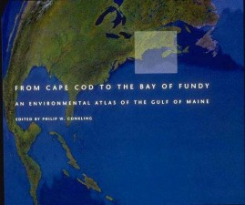 From Cape Cod to the Bay of Fundy